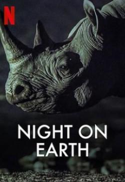 地球的夜晚04